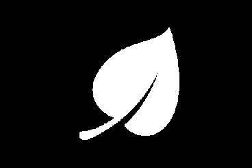 hoja21-368×245