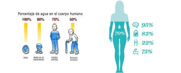 agua en el cuerpo humano