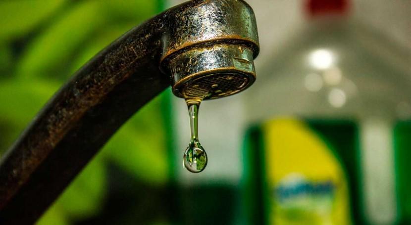 trihalometanos agua